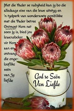 Happy Birthday Pictures, Happy Birthday Quotes, Birthday Wishes, Cute Quotes, Funny Quotes, Evening Greetings, Goeie Nag, Goeie More, Afrikaans Quotes