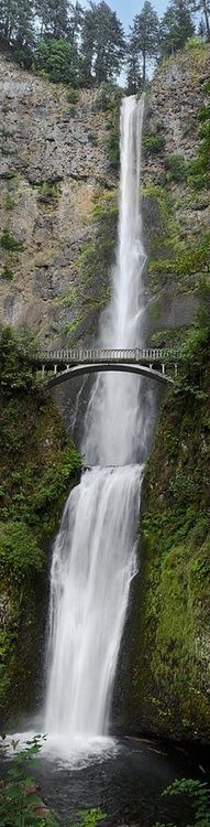 Multnomah Falls, Columbia River Gorge - Oregon  2nd highest waterfall in United States. (Benson bridge)