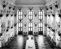 #deer Interior And Exterior, Interior Design, Trophy Rooms, Decoration, Sweet Home, House Design, Tumblr, Display, Black And White