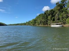 Daintree-Nationalpark Great Barrier Reef, Cairns, Rafting, Safari, Water, Travel, Outdoor, Alexandra Of Denmark, Tropical Rain Forest