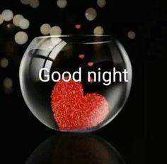 Good night, my love! Evening Greetings, Good Night Greetings, Good Night Messages, Good Night Wishes, Morning Greetings Quotes, Good Night Quotes, Morning Quotes, Good Night For Him, Night Love