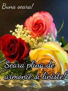 Good Morning Roses, Framed Wallpaper, Ikebana, Corporate Gifts, Happy Day, Flower Art, Beautiful Flowers, Spring Summer, Seasons