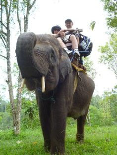 Col and I in Bali ..At the Elephant Camp . Her name was Agnus