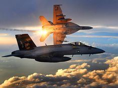 U.S. Navy McDonnell-Douglas FA-18 Hornets banking into action.