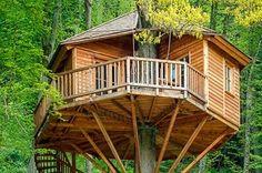 Baumhausurlaub in Luxus-Baumhäusern. Das Baumhaushotel der Seemühle befindet sich im Herzen Deutschlands, im schönen Spessart.