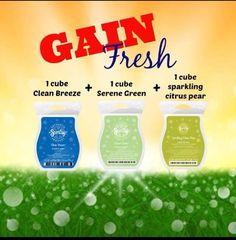 Gain fresh scent recipe  sarahcantu.scentsy.us