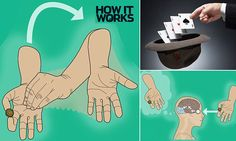 The science of magic tricks: From misdirection to 'pausing' time, experts reveal how illusions mess with our minds | Daily Mail Online