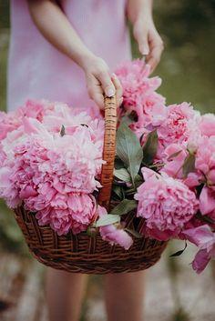 Blooming Flowers, Summer Flowers, Cut Flowers, Purple Peonies, Peonies Bouquet, Peony, Bouquets, Lavender Cottage, Flower Farmer