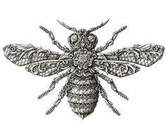 Los detallados dibujos ornamentales de Alex Konahin