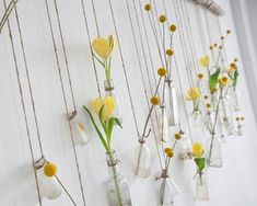 a glass vase for flowers to hang on wall