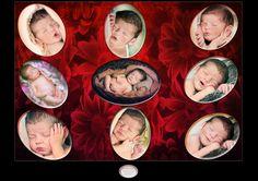fotografa de newborn em Belo Horizonte/MG/Brasil FotografadefamiliasemBeloHorizonte/Albumdefamilia/Bookdefamiliaegestante/Lenalima fotografa de gestantesefamilias,gestantes,bebes,newborn,animais,casamentos e aniversarios em Belo Horizonte WWW.LENALIMA.FOT.BR