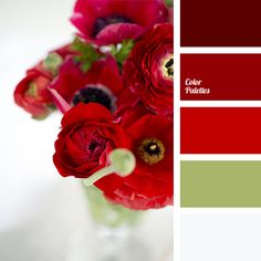 Color Palette #2079