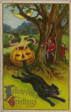 Wolf Halloween Postcard