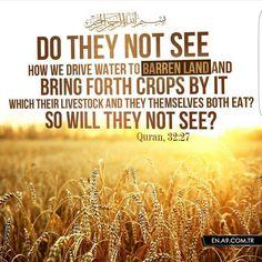 A verse of Quran.