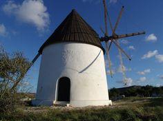 Los molinos de Níjar: patrimonio etnológico en pleno Parque Natural | Costa de Almeria
