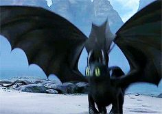 Oh my freaking gosh!!!!! Toothless is so clueless in the ways of flirting, but can you blame him? He's only ever watched Hiccup.... and it was more Astrid that instigated their relationship.