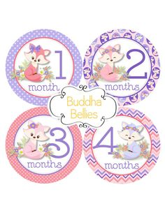 Fox Baby Girl Monthly Baby Stickers - Baby Month Stickers - Fox Nursery - Fox…