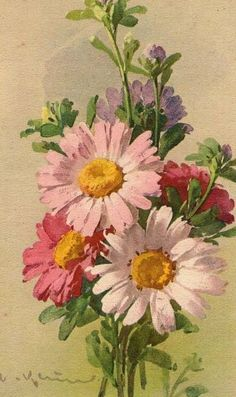 Catherine Klein ~ pink and purple flowers
