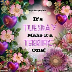 Attrayant Its Tuesday, Make It A Terrific One