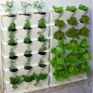 Grow a vertical indoor garden beside a window year round with this