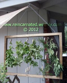 Cannabis Drying Rack Eclectic Home Tour  The Wood Grain Cottage  Herb Drying Racks