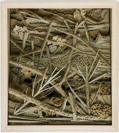 Eva Jospin, cardboard forest