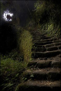 3000 Steps Day 3 on the Inca trail. #stairway #steps #stone #Inca #trail #travel #photography