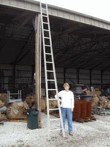 Large Apple Ladders!