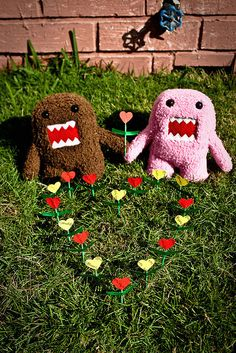 Johnny just showed me the pink domo last night :) too cute
