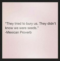 """They tried to bury us. They didn't know we were seeds. "" Mexican proverb"