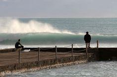 surfing surfing surfing....