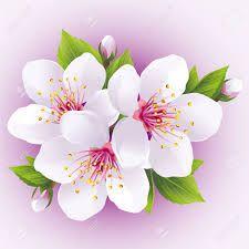"""Résultat de recherche d'images pour """"papier peint asiatique fleurs"""""""