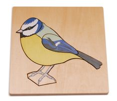 Simple board puzzle highlighting the features of this easily recognisable bird. Montessori Color, Chaffinch, Similarities And Differences, Blue Tit, How To Gain Confidence, Bird Cards, Natural World, Baby Toys, Wildlife