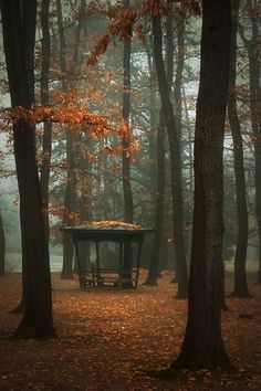Winter Gazebo, Sophia, Bulgaria