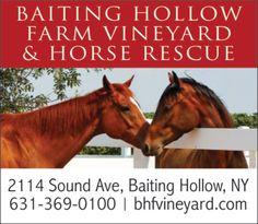 Baiting Hollow Winery Long Island Ny