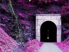 West Virginia; Tunnel; Fairmont WV; WV; Rail to trail; Waterfall