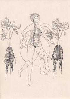 Harriet Lee-Merrion Illustration