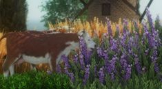 [BodegaBaby] - mountainsplitter: Farm Animal Set FREE DOWNLOAD... Sims Four, Sims 4, Country Life, Farm Animals, Free, Mountain, Inspiration, Furniture, Animals