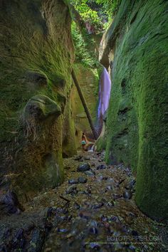 Sombrio Beach, Vancouver Island - Fototripper Hidden Waterfall on Vancouver… Oasis, Canadian Travel, San Juan Islands, Vancouver Island, Island Life, Beach Photos, Photo Tips, British Columbia, Places To See