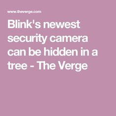Blink's newest security camera can be hidden in a tree - The Verge