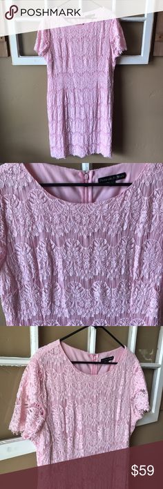 Preston & York Pink Lace Dress Beautiful Preston & York Pink Lace Dress! Size 18, bust measures about 40 inches and length is also 40 inches. This dress retails for $150 but since the lace is a little worn- I'm discounting it over 50% off! The shell is 45% cotton, 30% nylon, 25% rayon. Lining is 97% polyester and 3% spandex. This dress is perfect for date night or any special event! I offer discounts on bundles and all reasonable offers will be considered! Preston & York Dresses Midi