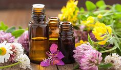 Holiday Make-and-Take Gifts Using Essential Oils - Check out the handout from our program! http://deerfieldlibrary.org/wp-content/uploads/2016/12/Holiday-Make-and-Take-Handout.pdf