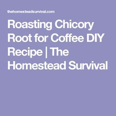 Roasting Chicory Root for Coffee DIY Recipe | The Homestead Survival