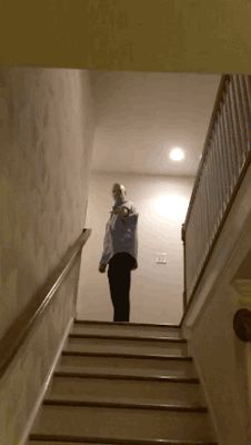 Share this Pet Flying Squirrel Gliding Down Stairs in Slow Motion Animated GIF with everyone. Gif4Share is best source of Funny GIFs, Cats GIFs, Reactions GIFs to Share on social networks and chat.