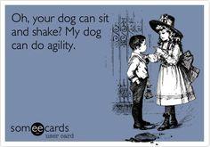 Agility Dog Ecard: Oh, your dog can sit and shake? My dog can do agility. Enjoy, ActiveDogToys.com