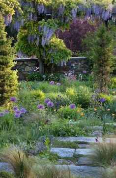 mooie natuurlijke tuin