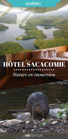 Dormir en nature au Québec? Des kilomètres de forêt. L'hôtel Sacacomie, délicatement posé sur le bord d'un lac portant le même nom, est un havre de paix. Bien caché au coeur d'un feuillage épais, il offre le décor idéal pour la contemplation de la nature. #québec #hotel #hotels #dormir #nature #randonnée #animaux #voyage #voyager #canada #sacacomie #mauricie Belle Villa, Le Havre, Destinations, Travel With Kids, Quebec, Nature, Traveling, Boutique, Canada Travel
