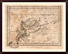 Scorpio Constellation Print, Astrological Sign, Astronomy Decor, Constellation Map, Zodiac Poster, Astrology Gifts, Astronomy Art by DicosLand on Etsy
