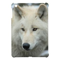 #Portrait of a polar wolf #cover for the iPad mini #JAMFotoWorms #Zazzle.com