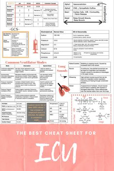 Nurses Discover ICU Cheat Sheet - Printed Laminated This cheat sheet is made to help you study and have essential information right at Cardiac Nursing, Nursing Mnemonics, Med Surg Nursing, Nursing Assessment, Pediatric Nursing, Nursing Cheat Sheet, Nursing Tips, Med School, Nursing School Notes